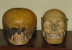 Starchild and human skulls