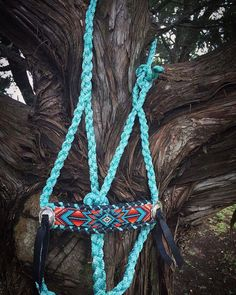 5 Halters For The Turquoise Obsessed Cowgirl - Cowgirl Magazine Horse Halters, Horse Saddles, Barrel Racing Horses, Barrel Horse, Western Horse Tack, Western Riding, Tack Sets, Horse Accessories, Horse Gear