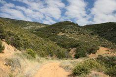 On the Ritter Motorway in the Sierra Pelona Mountains