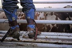 Jacksonville Texas Rodeo Rodeo Cowboys, Cowboys And Indians, Country Men, Country Girls, Country Living, Jacksonville Texas, Rodeo Rider, Rider Boots, Bull Riders