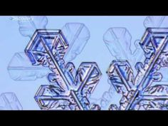 Wow- great video with lots of info for kids. Snowflake Watching