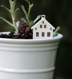 Mini gardens  #GardeninginMiniature