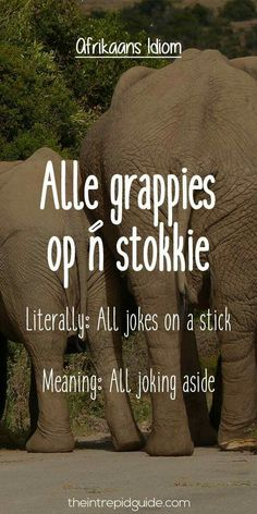 afrikaans expressions Alle grappies op n stokkie Afrikaans Language, Collective Nouns, All Jokes, Afrikaanse Quotes, Teachers Aide, Biker Quotes, Qoutes About Love, Idioms, Morning Quotes