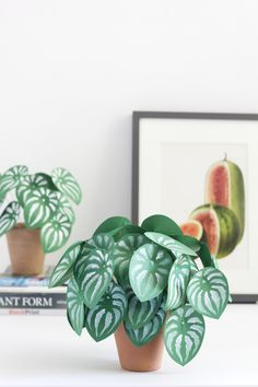 16 DIY Paper Plants to Make Your Indoor Garden a Reality Planter Protect little fingers and pet noses by trading out your cacti garden for these colorful pa Paper Leaves, Paper Flowers, Diy Paper, Paper Art, Papier Diy, Paper Plants, Plant Projects, Decoration Originale, Blog Deco