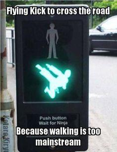 Flying Kick www.facebook.com/McDojoLife