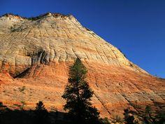 Checkerboard Mesa Zion National Park Utah picture, Checkerboard Mesa ...