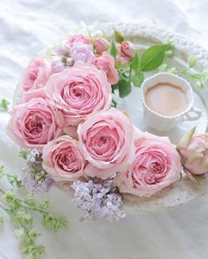 Pink Roses, Pink Flowers, Sweet Coffee, Tea And Books, Beautiful Rose Flowers, Shabby Flowers, Flower Tea, My Cup Of Tea, Rose Cottage