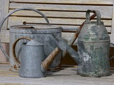 I am a sucker for old watering cans!