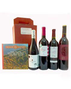 Vinos Barcelona Priorat- Montsant
