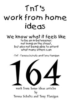 Front cover of TnTs Work From Home Ideas ebook - 164 articles in the ebook.