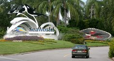 Sea World  Very sad the one in Sandusky, OH closed... My family used to go every summer.  I LOVE Sea World!!