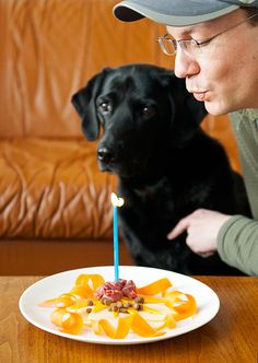Who ever heard of making a beautiful plate of food like this for a puppy's birthday?! Super cute idea & we don't even have pets :  )