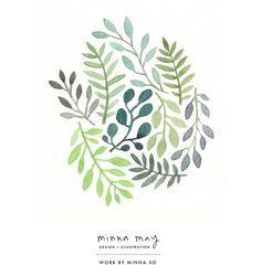 plants illustration - Google Search