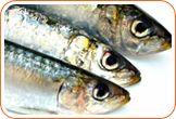 Fish: contain omega-3 fatty acids which are brain boosters