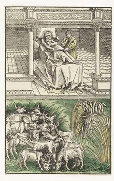 Lucas Cranach (I) | Jozef verklaart de dromen van Farao, Lucas Cranach (I), 1523 | Jozef staat naast het bed van de Farao die wordt gekweld door dromen. Het vertrek waar de Farao zich bevindt is weergegeven als een soort gallerij van waar hij en Jozef kijken naar twee gebeurtenissen in de dromen. Links vooraan worden de vette koeien opgegeten door de magere koeien, rechts buigen de dunne aren zich naar de dikke aren.