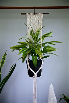 This macrame plant hanger is handmade with 3mm natural white cotton rope, featuring a decorative knotted design. Hangs from a hand stained wooden dowel. A unique piece that your favorite house plant is sure to love! Would make a lovely gift!  Wooden dowel is 12, macrame measures approx. 7 wide by 50 long. Hanging length will vary slightly depending on the size and shape of pot used. Shown here with an 8 and 6 diameter pot.  Best if used indoors with a nonporous pot. This item is READY TO…