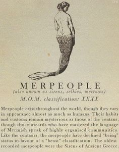 Merpeople- Fantastic Beasts and Where to Find Them