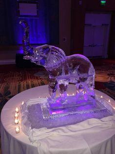 1 1/2 ice block elephant ice sculpture for a wedding reception in Orlando. #icesculptures #icesculpturesorlando #weddingice