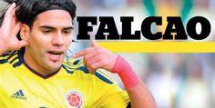 Pursuing a degree Falcao Premier League Champion