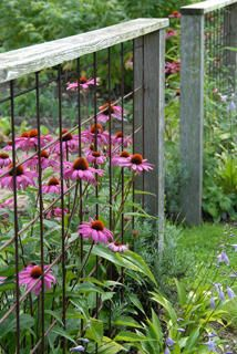 Garden Trellis, Garden Pots, Vegetable Garden, Fence Design, Garden Design, Garden Gates And Fencing, Farm Gardens, Garden Spaces, Garden Planning