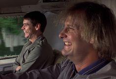 Jeff Daniels confirma que 'Dumb & Dumber To' comenzara a filmarse en septiembre | Media Drunks