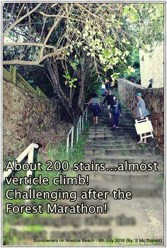 Mcdonalds, Climbing, Bliss, City Photo, Stairs, Challenges, World, Beach, Travel