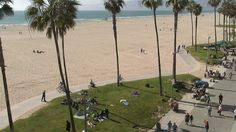 EarthCam and Venice Beach Suites & Hotel have teamed up to bring you a live webcam from lively Venice Beach in California. This camera invites viewers to take a peek at 'muscle beach' and other unique Venice Beach sites. Muscle Beach, Venice Beach, Live In The Now, California, Earth, Mother Goddess, World