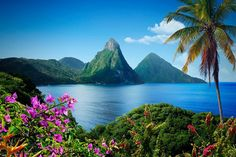 St. Lucia, Caribbean. Been here only on day trips (cruise ship) but would love to explore it better. Beautiful place.