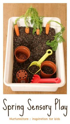 Spring sensory play tub with carrots - NurtureStore Spring sensory play activities for kids - fun for Easter too!<br> Such a fun spring sensory play tub, with extra ideas for spring activities for kids. Sensory Tubs, Sensory Boxes, Sensory Activities, Infant Activities, Play Activity, Easter Activities For Toddlers, Farm Sensory Bin, Motor Activities, Family Activities