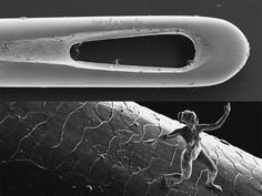 Nano-scale sculptures re-create the human body in the eye of a needle