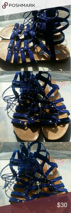 Steve Madden women's sandals Steve Madden women's suede royal blue gladiator style sandals, size 7.5. Has gold fastners, very comfy and stylish. Steve Madden Shoes Sandals