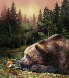 Carol Cavalaris Mixed Media - Bears Eye View by Carol Cavalaris Bear Paintings, Cross Paintings, Ours Grizzly, Photo Ours, Art D'ours, Creation Photo, Natsume Yuujinchou, Acrylic Paint Set, Nature Collection