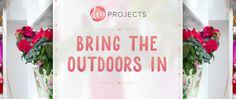 Mor Furniture Blog - DIY Projects to Bring the Outdoors In | Mor Furniture for Less
