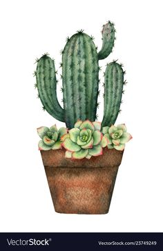 Watercolor vector composition of cacti and succulents in a pot isolated on white background. Flower illustration for your projects, greeting cards and invitations. Cactus Drawing, Cactus Painting, Watercolor Cactus, Cactus Art, Watercolor Paintings, Simple Watercolor, Tattoo Watercolor, Watercolor Animals, Watercolor Techniques