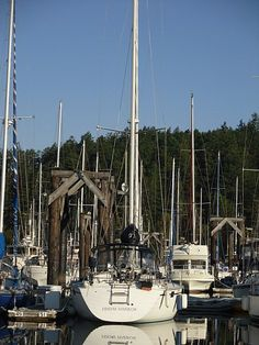 Friday Harbor Sailboat, Washington state-- I have visited Friday Harbor and it is charming! Coeur D'alene Idaho, Northwest Usa, Forever Green, San Juan Islands, Travel Memories, Coastal Living, Washington State, Sailboat, Printing Services