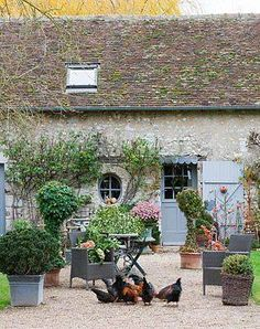 Pretty and romantic garden with topiaries, chickens, and thatched cottage.