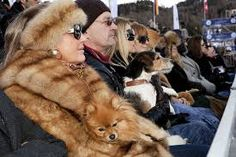 st moritz wealthy people - Google-haku