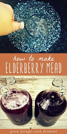 Mead or fermented honey wine is a delicious ancient fermented beverage and its so easy to make This elderberry mead made with foraged berries is a wonderful version of classic mead and perfect for the holidays. Elderberry Honey, Elderberry Recipes, Fermented Honey, Fermented Foods, Sauerkraut, Mead Wine, Mead Recipe, Honey Wine, Fermentation Recipes