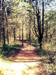 Trails and plavrs to visit in kentucky Doe Run Lake Perimeter Trail.
