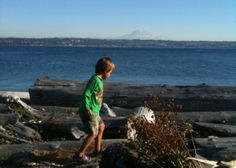 PNW area Island day trips that are good to do with kids