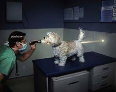new X-Ray..!!!