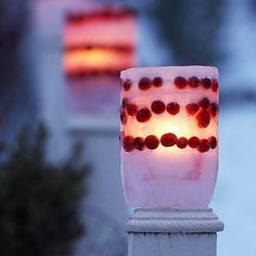 simple and beautiful outdoor luminaries with ice and cranberries!