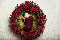 Christmas Newborn, Photography by mj, LLC