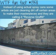 """Wtf Fun Fact #1358 """"Reverse"""