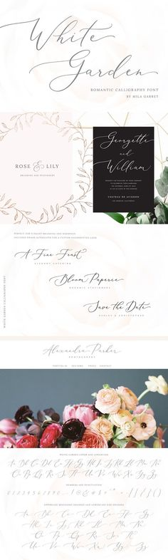 Introducing a new beautiful calligraphy font White Garden! White Garden is perfect for elegant logos upscale packaging wedding stationery websites and any other projects requiring a Font Design, Design Typography, Web Design, Graphic Design, Blog Design, Beautiful Calligraphy, Beautiful Fonts, Calligraphy Logo, Modern Calligraphy