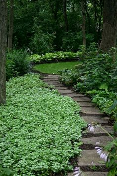 Although the original purpose of creating garden pathway is to serve a practical purpose, it is also an important constituent part of the garden. a garden without paths won't mean a sense of…MoreMore #backyardgardening