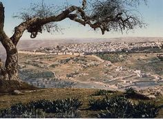 The Holy Land, Jerusalem I've always wanted to visit here and visit every holy location from garden tomb to crucifix site on skull mountain to pathway street to crucifixion to splitting of the sea site to black top mountain Ect.. Be a dream come to simply amazing