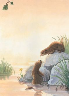 From the Facebook Page Otter love