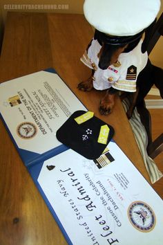 Crusoe becomes official Fleet Admiral of the US Navy!