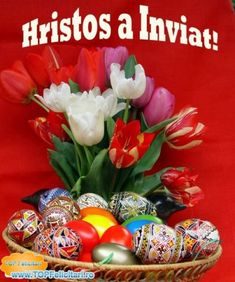 Hristos a Inviat , Paste fericit Easter Flowers, Holidays And Events, Happy Easter, Spring Time, Happy Halloween, Diy And Crafts, Christmas Bulbs, Holiday Decor, Birthday